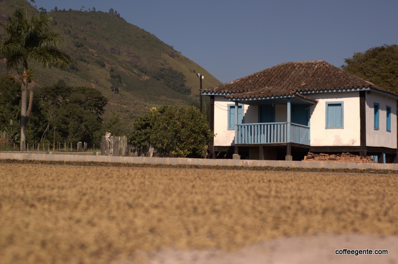 coffee drying on patio on Fair Trade farm in Brazil