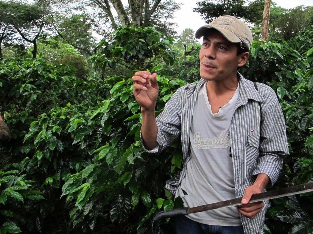 Leonardo, at La Revancha farm in Nicaragua